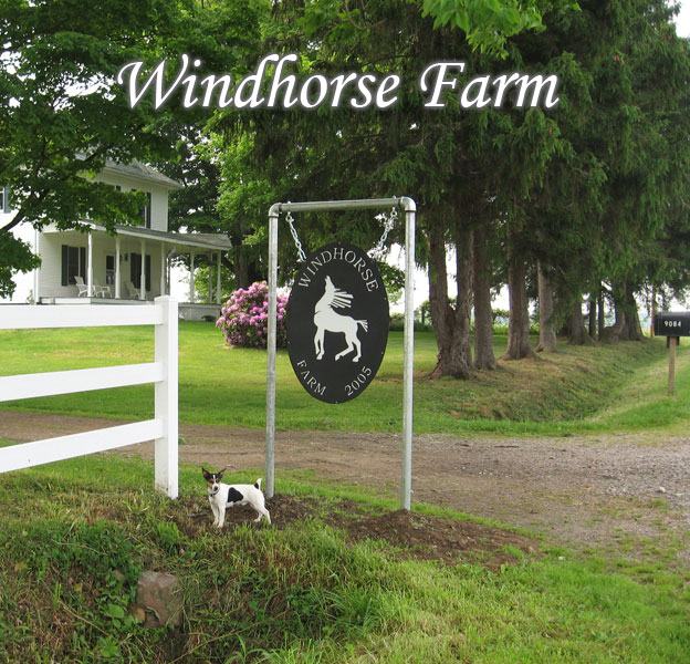 Welcome to Windhorse Farm